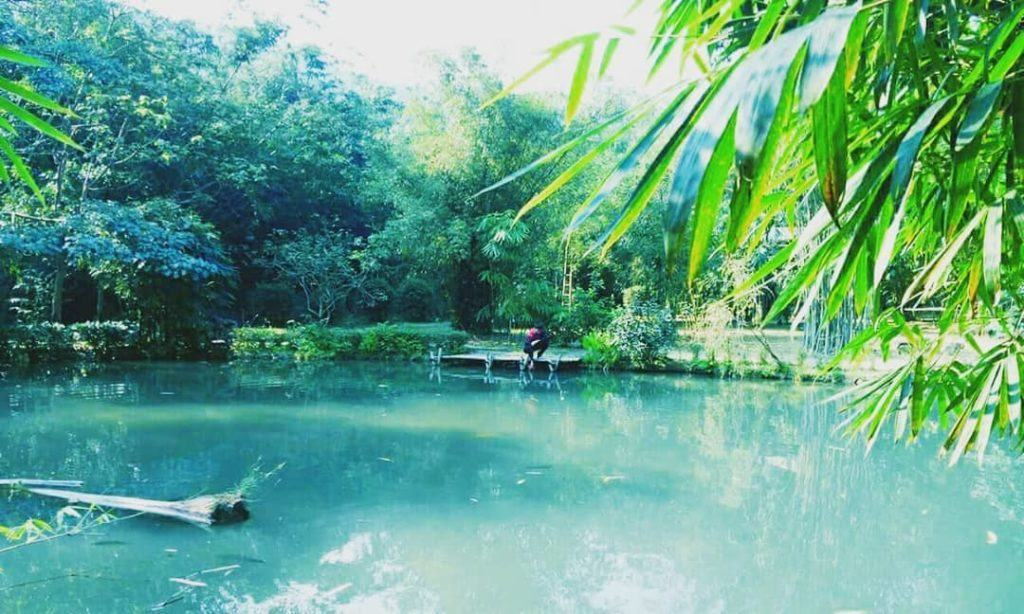 hồ cá ở Sơn trà tịnh viên Đà nẵng (3)