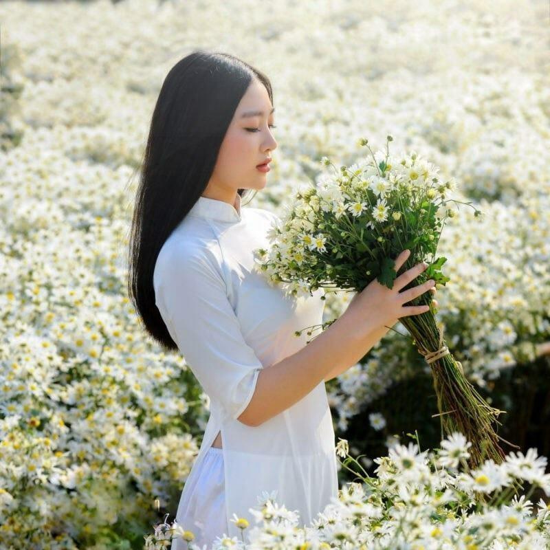 bạn nữ chụp hình sống ảo tại vườn cúc họa mi Đà Nẵng