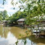 Sự quyến rũ lạ lùng của rừng tre tại khu du lịch sinh thái Hà Gia - Quảng Nam